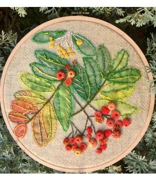 Rowan and pyracanthas berries
